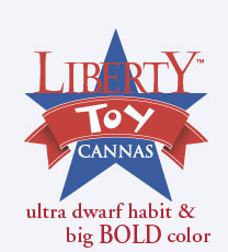 Liberty Toy Cannas